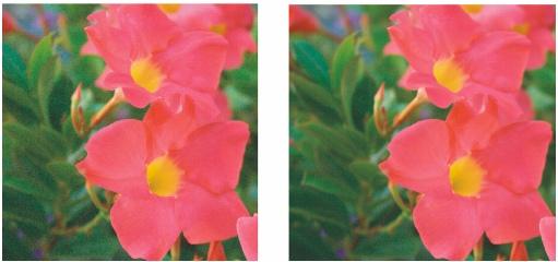 Photo Paint raw noise remove Mettre au point et réduire le bruit des fichiers bruts d'appareils photo