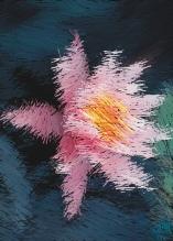 Photo Paint fx art scraper Galleria di effetti speciali