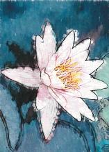 Photo Paint fx art watercolor Galleria di effetti speciali