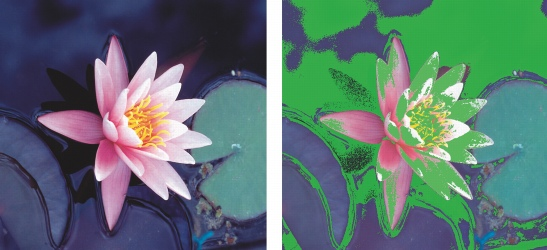 Photo Paint manage gamut Scelta di impostazioni avanzate per la gestione del colore