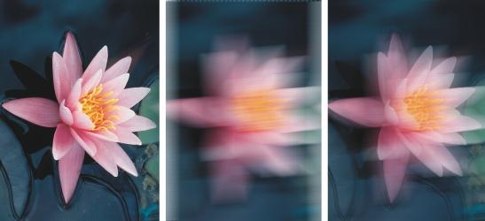 Photo Paint undo fade Ripetizione e dissolvenza di azioni