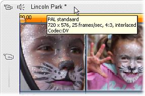Pinnacle Studio image002 Het projectformaat voor video