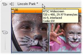 Pinnacle Studio image002 Projektets videoformat