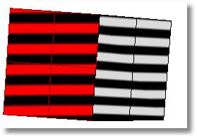 Rhinoceros zebra 901 position Analysis