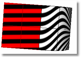 Rhinoceros zebra 903 curvature Analysis