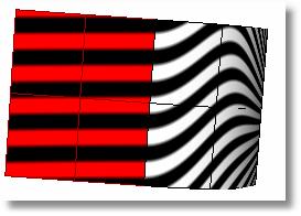 Rhinoceros zebra 903 curvature 分析