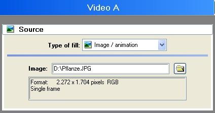 Vitascene eng vita109 Apply Sparkle filter to an image