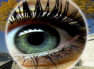 Vitascene iris60 Iris