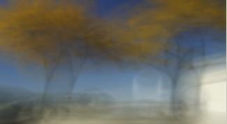 Vitascene vita blur annulus2 Anneau flou