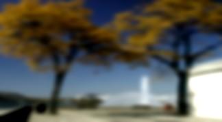 Vitascene vita blur black Flou + Expand black