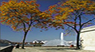Vitascene vita blur cycle frequence2 Flou fréquentiel circle