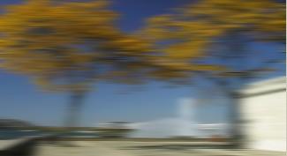 Vitascene vita blur direction1 Flou directionnel