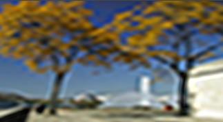 Vitascene vita blur frequence1 Flou fréquentiel