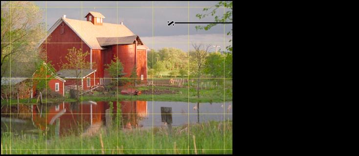Abbildung. Eine Überlagerung mit gelben Rasterlinien über einem Bild, die das genaue Ausrichten des Horizonts erleichtern.