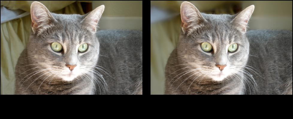 """Abbildung. Bild vor und nach der Anwendung der Quick-Brush-Anpassung """"Weichzeichnen""""."""