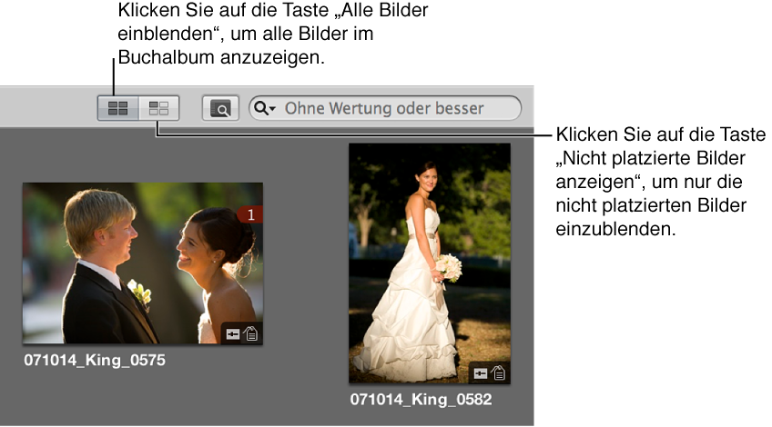 """Abbildung. Die Taste """"Alle Bilder einblenden"""" und """"Nicht platzierte Bilder anzeigen"""" im Browser."""