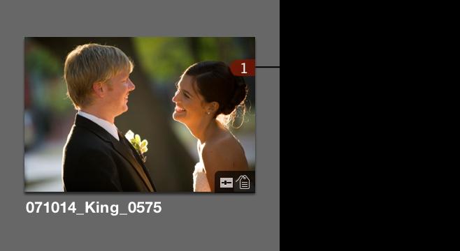Abbildung. Miniatur im Browser mit einer Zahl in der rechten oberen Ecke, die angibt, wie oft das Bild im Buch verwendet wurde.