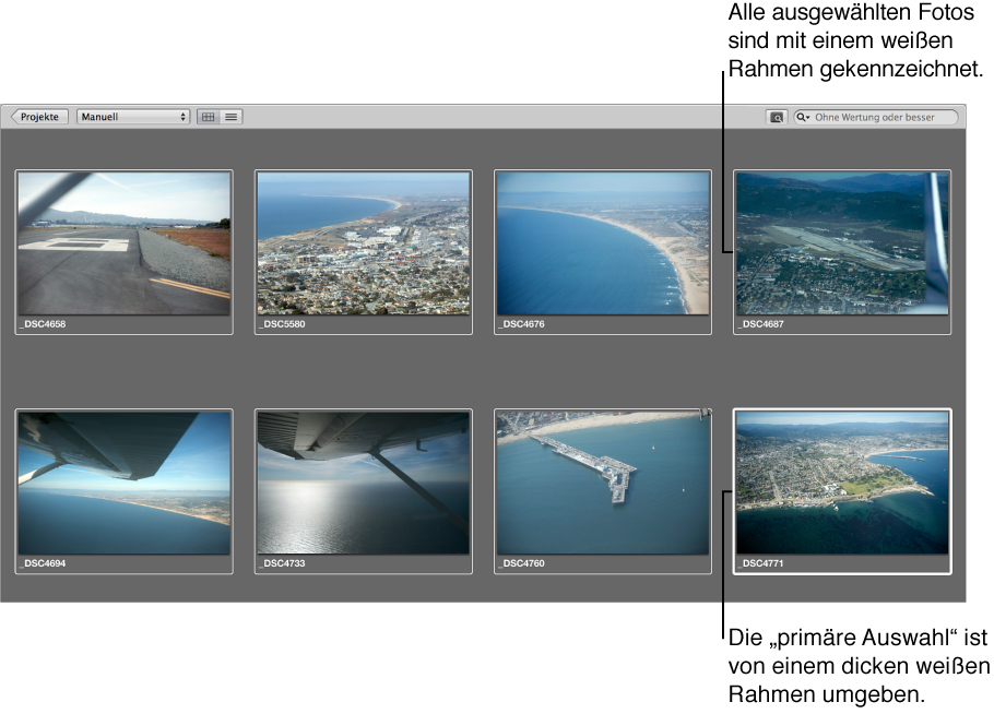 Abbildung. Browser mit der am dicken weißen Rahmen erkennbaren primären Auswahl und weitere ausgewählte Bilder mit einem dünnen weißen Rahmen.