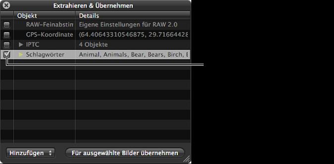 """Abbildung. Schwebepalette """"Extrahieren & Übernehmen"""" mit ausgewähltem Feld """"Schlagwörter""""."""