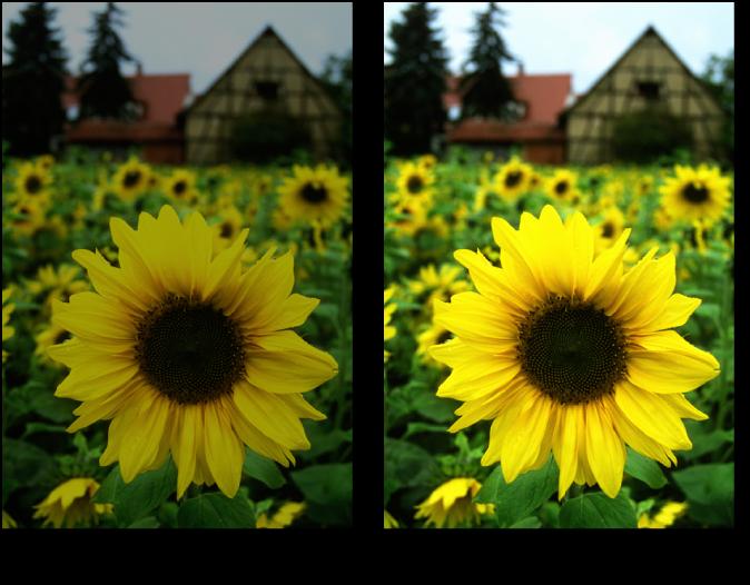 Abbildung. Bild vor und nach dem Anpassen der Belichtung.