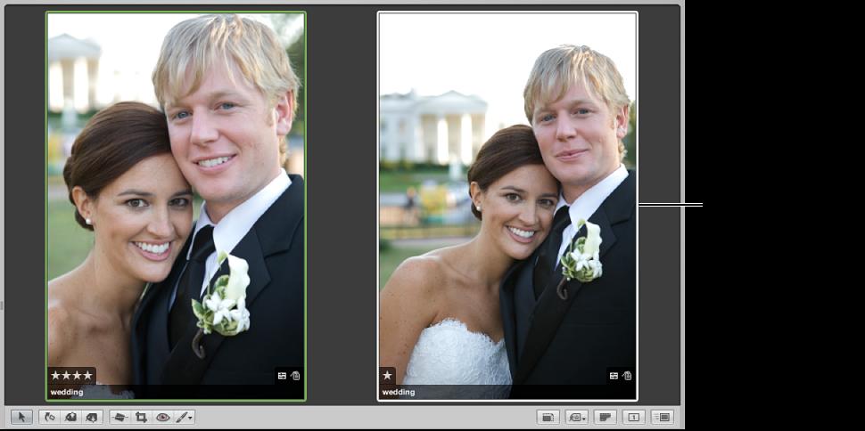 Abbildung. Viewer mit dem Vergleichsfoto auf der linken Seite und einem neuen Alternativfoto auf der rechten Seite.