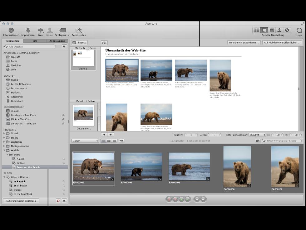 """Abbildung. Hauptfenster von Aperture mit einem ausgewählten Webseiten-Album im Informationsfenster """"Mediathek"""" und Webseiteneditor mit den Bildern des Albums."""
