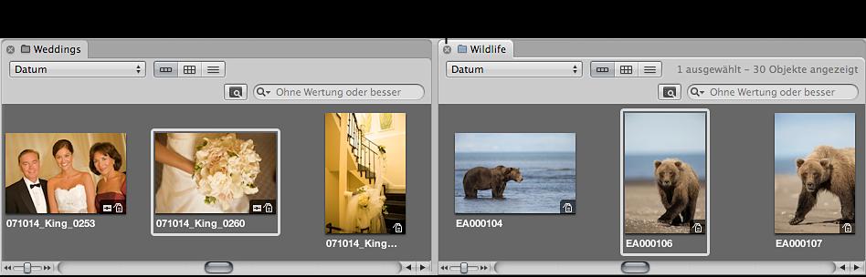 Abbildung. Browser mit der Taste zum Schließen in einem Projekttitel.