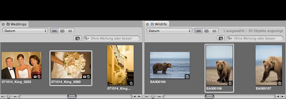 Abbildung. Browser mit zwei Projekten, die nebeneinander in separaten Bereichen angezeigt werden.