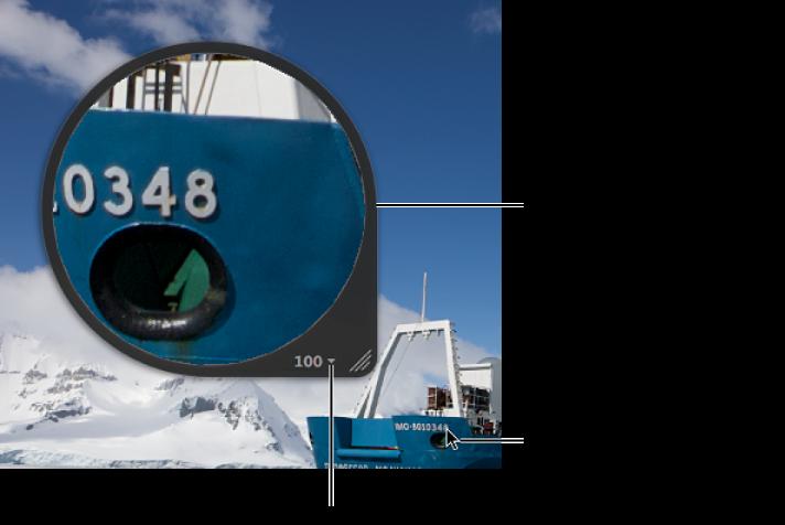 Abbildung. Zentrierte Lupe, die den Bildausschnitt vergrößert, auf dem sich der Zeiger im Viewer befindet.