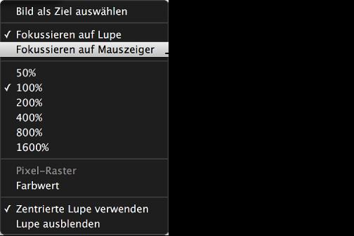"""Abbildung. Einblendmenü """"Lupe"""" mit dem Befehl """"Fokussieren auf Mauszeiger""""."""