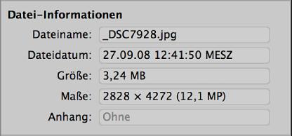 Abbildung. Dateiinformationen in der Importübersicht.