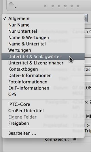 """Abbildung. Optionen im Einblendmenü """"Metadaten-Ansicht"""" im Informationsfenster """"Info""""."""