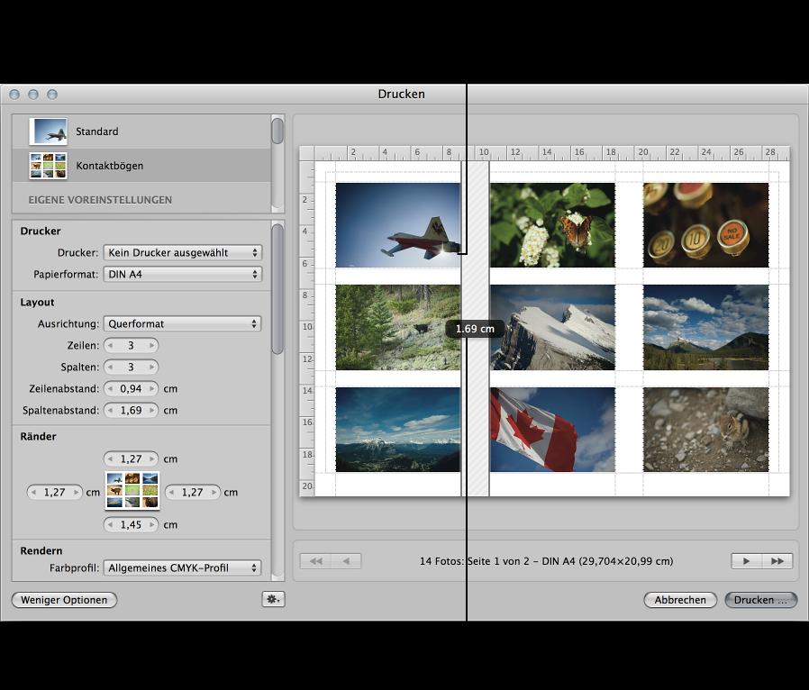 Abbildung. Abstandslinien, die zwischen den Bildern auf einem Kontaktbogen im Vorschaubereich des Druckfensters bewegt werden.