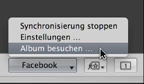 """Abbildung. Das Einblendmenü """"Facebook"""" in der Werkzeugleiste."""