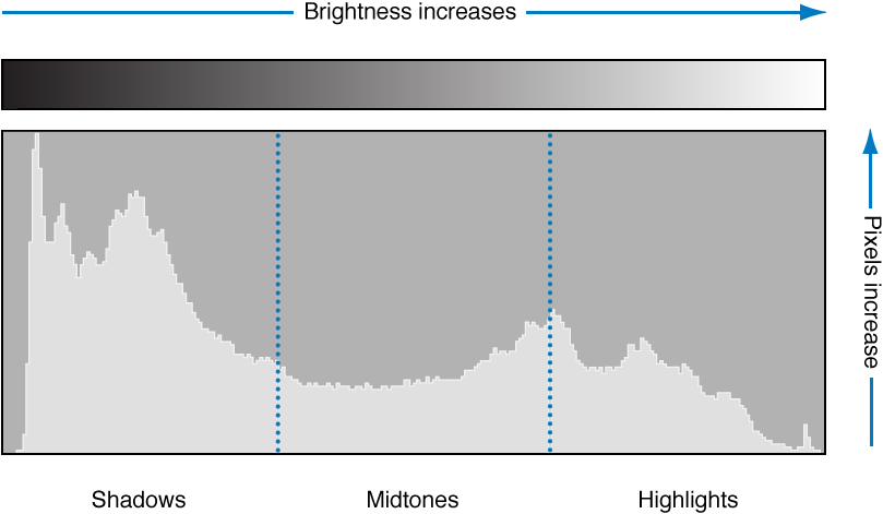 Figure. Illustration showing how a histogram graphs a pixel's luminosity according to its tonal position.