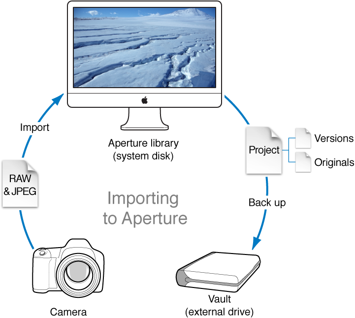 Figure. Diagram of an Aperture workflow that involves taking images with a digital camera, importing them into the Aperture library on your computer's system disk, and then backing up the library containing the masters and versions to a vault.