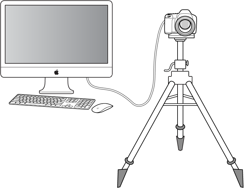 Figure. Illustration of a digital camera tethered to a computer.