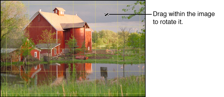 Figure. Image showing a yellow grid overlay appearing over the image to help you make the horizon perfectly level.