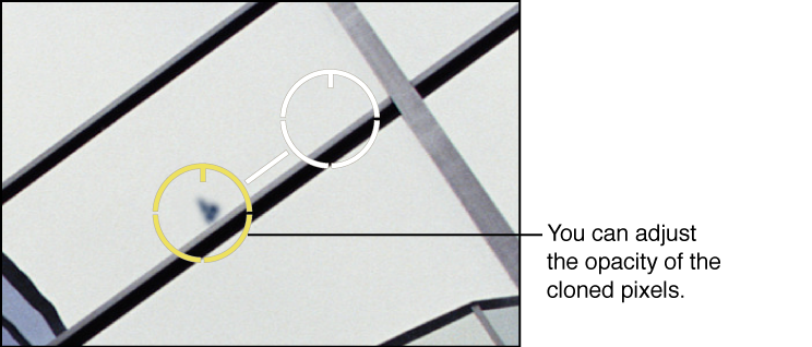 Figure. Image showing an Opacity adjustment to pixels within a Spot & Patch target overlay.