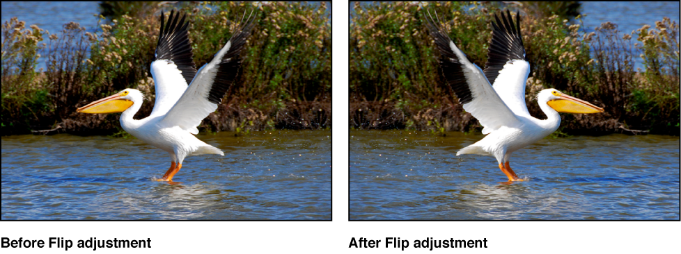 Figure. Image before and after a Flip adjustment.