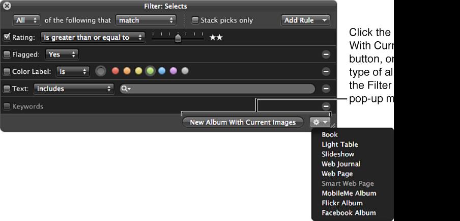 Figure. Browser's Filter HUD showing items in the Filter HUD Action pop-up menu.