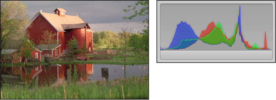 Figure. Side-by-side comparison of a correctly exposed image and its histogram, with the peaks concentrated in the center of the graph.