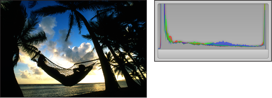 Figure. Side-by-side comparison of an image shot in silhouette and its histogram, with the peaks concentrated in both the left and right sides of the graph and no activity present in the middle.
