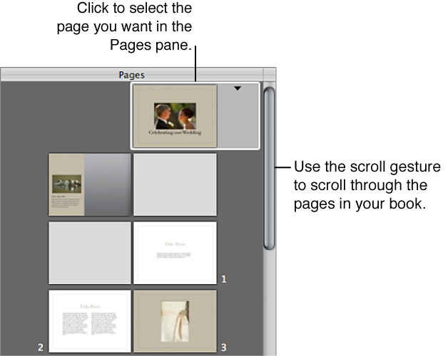 Figure. Controls in the Pages pane of the Book Layout Editor.