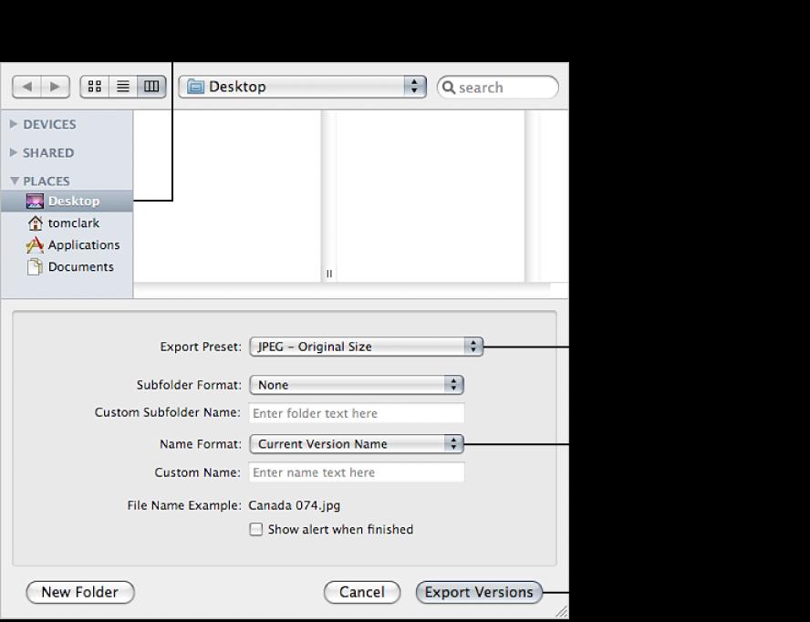 Figure. Controls in the Export dialog.