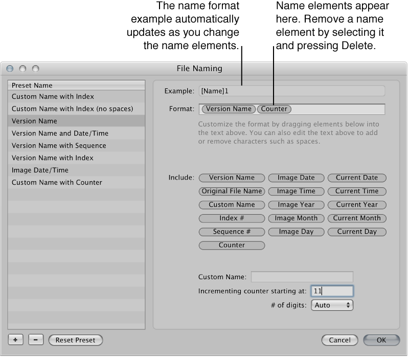 Figure. Name elements used to create filenaming presets in the File Naming dialog.