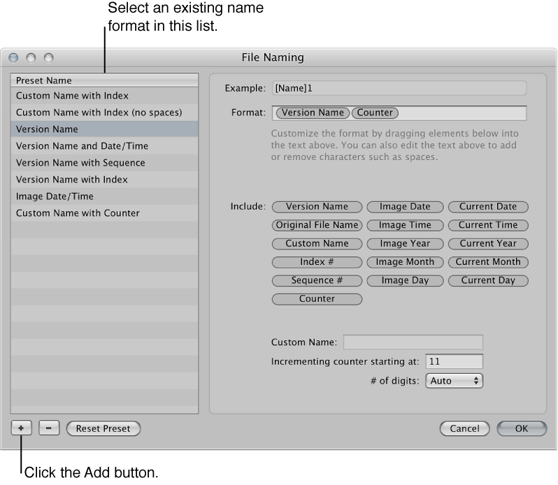 Figure. Name format selected in the File Naming dialog.