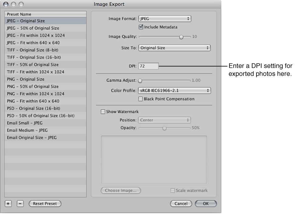 Figure. DPI setting control in the Image Export dialog.