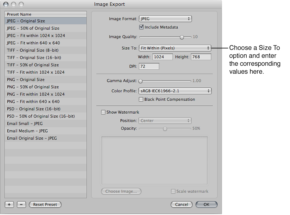 Figure. Size To options in the Image Export dialog.