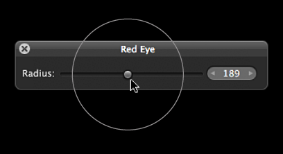 Figure. Circular overlay appearing over the Radius slider in the Red Eye HUD to indicate the size of the Red Eye target overlay.